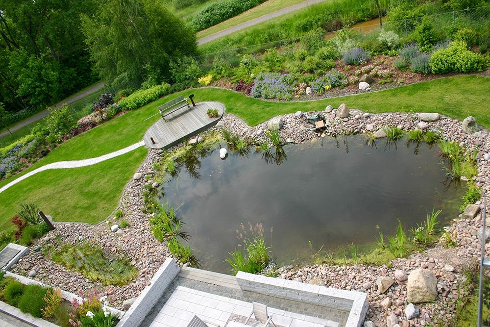 Gartenpflege Teich